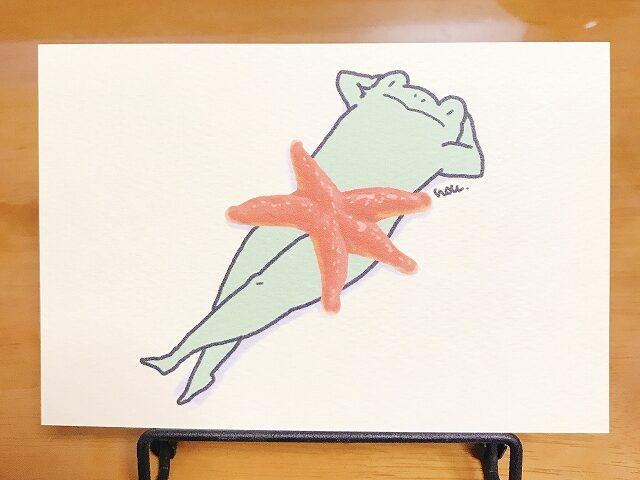 カエルとヒトデのポストカード